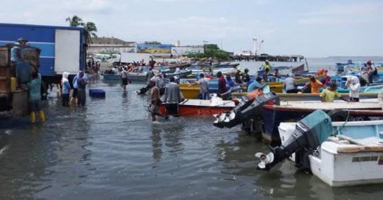 Eficiencia energética en la pesca artesanal / Foto: IIGE