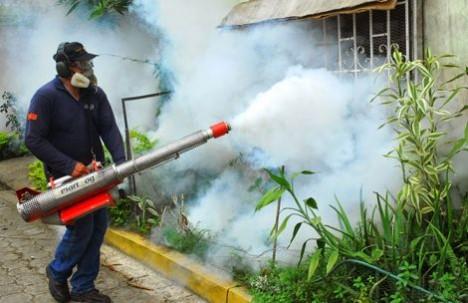 588f7f2981ef Cuatro casos de chikungunya se registran en la Amazonía   Juicio Crudo