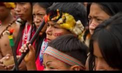 Noticiero Semanal El Oriente Ecuador 19-03-2021 / Foto: Shutterstock
