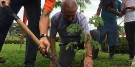 Siembran 900 plantas en la Amazonía ecuatoriana en el Día Nacional del Árbol. Foto: El Comercio