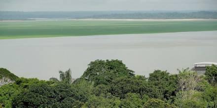 Francia finanza proyecto para proteger millones de hectáreas en la Amazonía / Foto: EFE