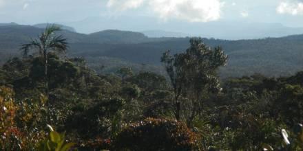 Reserva Biológica El Quimi - Foto: El Universo