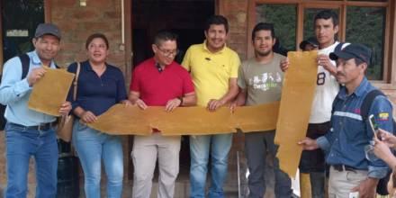 La producción apícola es incentivada en Zamora / Foto: cortesía ministerio de Agricultura