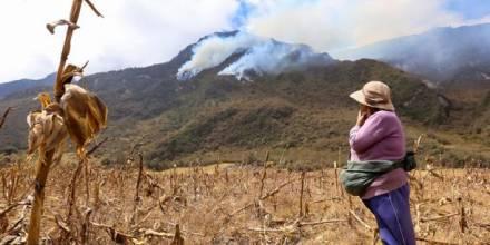 Plantas y animales de la Reserva del Pululahua están en peligro. Foto: El Comercio