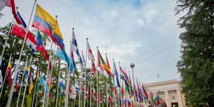 ONU adopta iniciativa de Ecuador y Perú sobre transferencia ilícita de armas / Foto: EFE