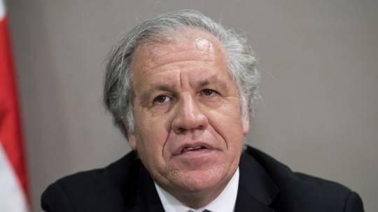 Indígenas de Ecuador saludan al MAS en Bolivia y critican a la OEA de Almagro / Foto: EFE