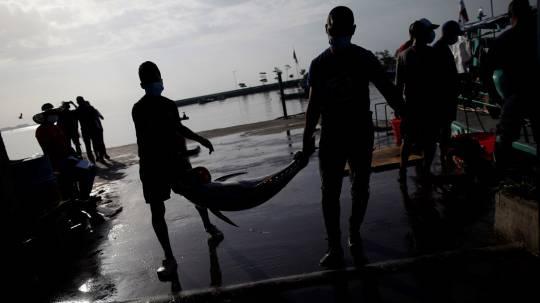 WWF pide a Gobierno de Ecuador acciones a favor de las poblaciones de atunes
