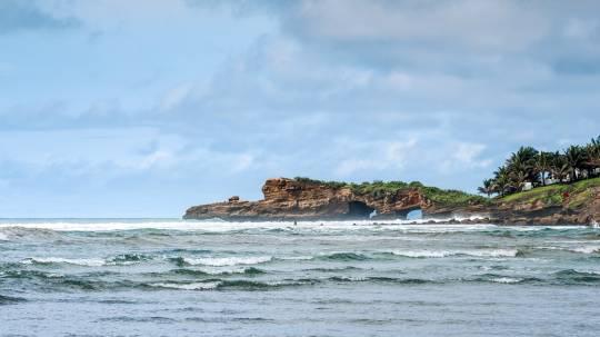 Estudio internacional verifica especies exóticas en la costa / Foto: EFE