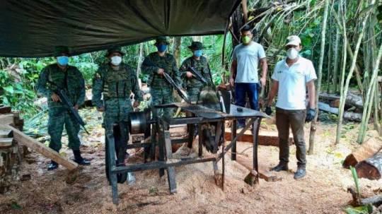 Miembros de Fuerzas Armadas localizaron un aserradero clandestino en la reserva Cuyabeno. Foto: Cortesía