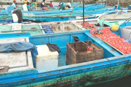 El interior de las embarcaciones también resultó afectado por las manchas de crudo. Foto: Marcel Bonilla/ EL COMERCIO